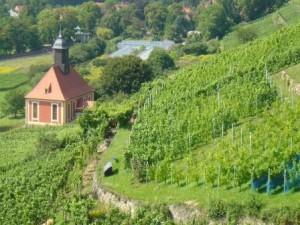 Weinbergkirche in Pillnitz (c) AugustusTours