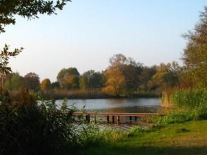 Seen-Landschaft im Elbe-Havel-Winkel (c) AugustusTours