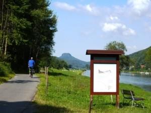 Fahrradfahrer am Elberadweg in der Sächsischen Schweiz (C) AugustusTours