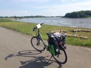 Fahrrad am nördlichen Elberadweg (c) AugustusTours