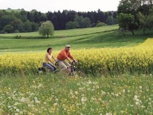 Radfahrer am Elberadweg (c) velociped