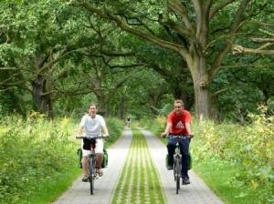 Fahrradfahrer am Mulderadweg kurz vor Dessau (c) AugustusTours