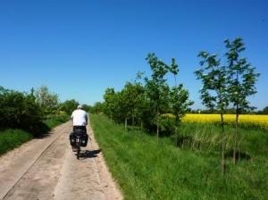 Radfahrer im Havelland (c) AugustusTours